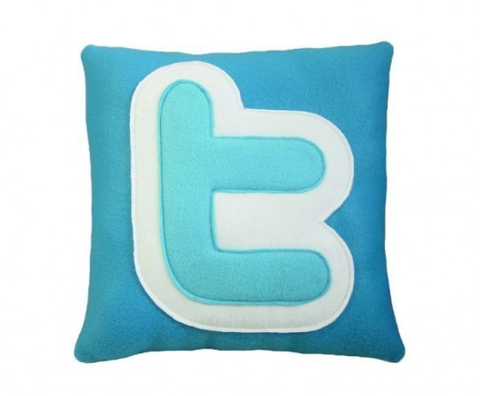 Coussin Twiter